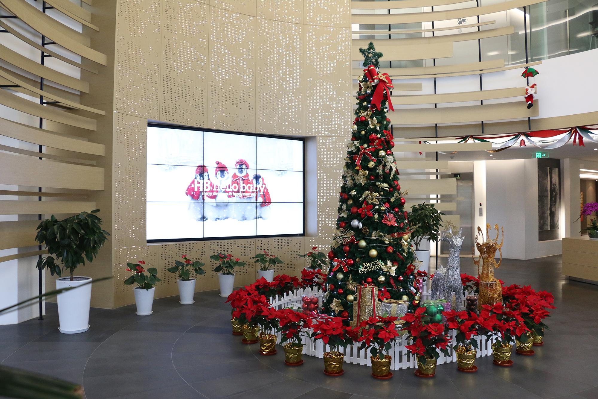 圣诞布置1.JPG